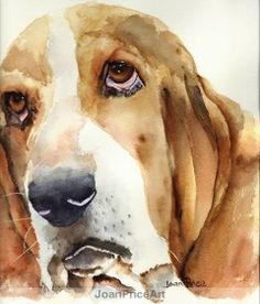 Bassett Hound Print by JoanPriceArt on Etsy, $12.50 #beautifulswitch @Jaime Johnson #busterbrown you need one of these made