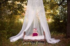 Newborn Baby Child Photography Prop DIGITAL  by sweetpeapalace