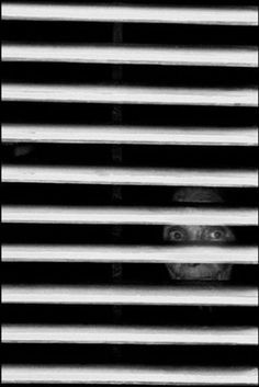 Ferdinando Scianna      ITALY. Sicily. Bagheria. Old woman back of the shutters.