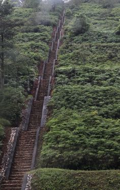 What a stairway and path.  My way of thinking, you would have to do a lot of resting along the way.