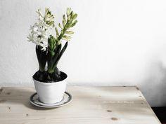 Art Photography, Planter Pots, Vase, Home Decor, Indoor House Plants, Fine Art Photography, Decoration Home, Room Decor, Vases