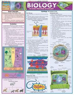 Biology (Quickstudy: Academic) by Inc. BarCharts. $4.95. Edition - Chrt. Publication: December 9, 2002. Publisher: QuickStudy; Chrt edition (December 9, 2002)