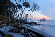 Hunting Island State Park - Beaufort County South Carolina SC. My Favorite Place to go Camping!