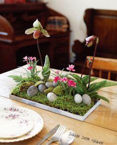 microjardim, com musgos, pedrinhas, plantas suculentas e orquídeas
