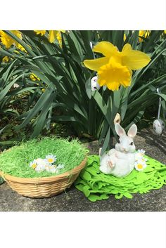Happy #Easter! – Ein frohes #Osterfest! | bestswiss.ch Plants, Planters, Plant, Planting
