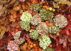 Colori d'autunno http://lefotodiluisella.blogspot.it/