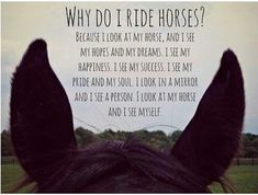 Truer than true, I look at my horse and see myself!