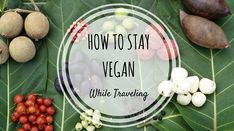 How to Stay Vegan While Traveling Europe by Laura Verbich - A featured post on Happiest When Exploring Traveling Europe, How To Stay Healthy, Vegan, Tourism, Tools, Animal, Easy, Kitchens, European Travel