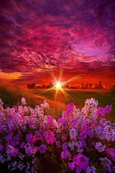 New photography beautiful sunset nature ideas All Nature, Amazing Nature, Beautiful Images Of Nature, Beautiful Nature Photography, Beautiful Scenery Pictures, Pink Nature, Nature Sounds, Pretty Photos, Amazing Photos