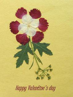 Pressed Flower Greeting Card   Valantine's Card by SmileWithFlower, $3.30