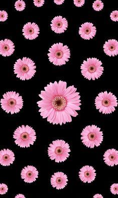 Flower Background Wallpaper, Flower Phone Wallpaper, Phone Screen Wallpaper, Sunflower Wallpaper, Cute Wallpaper Backgrounds, Pretty Wallpapers, Iphone Wallpaper Unicorn, Cute Emoji Wallpaper, Cool Wallpaper