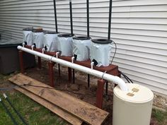 Dripper system hydroponic tomato set up project #1