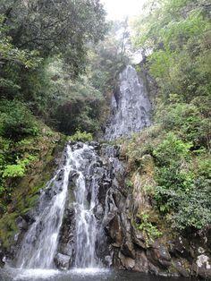Google Image Result for http://upload.wikimedia.org/wikipedia/commons/2/21/Kaname_Metaki.JPG