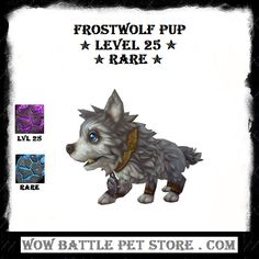 72 Best WoW Pets For Sale | World of Warcraft Pets | New