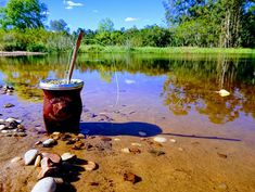 Fishing Tips, Moon Calendar, Angler Fish, St Louis, Sports, Photos