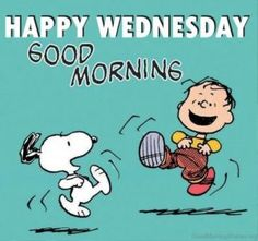 Are you looking for the best good morning Wednesday images? We have 20 perfect Wednesday quotes for you to share with your friends. Wish all your friends a good morning with one of these wonderful good morning happy Wednesday quotes. Wednesday Hump Day, Wednesday Greetings, Happy Wednesday Quotes, Good Morning Wednesday, Happy Thursday, Wednesday Humor, Wonderful Wednesday, Blessed Wednesday, Wednesday Motivation