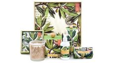 Olive Grove Collection