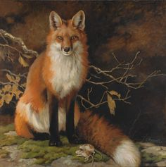 """The Quick Red Fox ~ artist Vivian Boswell, c.2011; oil on canvas, 30"""" x 30"""""""