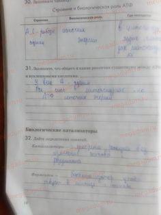 Страница 16 - Биология 9 класс рабочая тетрадь Пасечник, Швецов
