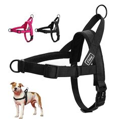 Dog Collars & Leads Soft Air Mesh Pet Harness Dog Walking Safety Strap Clothes Pet Dogs Cat Vest Harness Leash Lead Dog Apparel Harnais Pour Chien Ideal Gift For All Occasions Pet Products