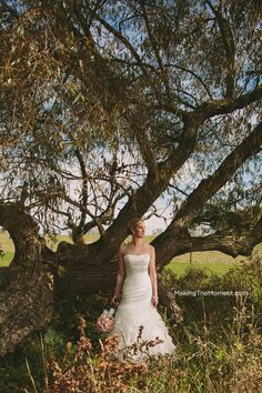 Ann looks AWESOME in her dress - we found this old tree at Brookside Farms that had been knocked over - so awesome for their wedding photography!