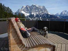 Ruhebank English Setter, Berg, Mount Everest, Mountains, Nature, Travel, Zugspitze, Naturaleza, Trips