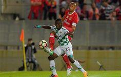 I Liga - O Moreirense 0 - Benfica 1 em vídeos. Veja o golo e as melhores jogadas