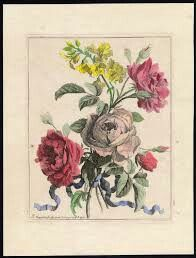 Beautiful watercolor engraving by Monnoyer. Love the roses, the colors, the composition. Art Floral, Adult Coloring, Coloring Books, Colouring, Book Flowers, Jean Baptiste, Antique Prints, Artsy Fartsy, Pencil Drawings