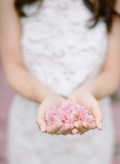 Cherry blossom petals: http://www.stylemepretty.com/2015/06/11/romantic-cherry-blossom-filled-engagement-session/ | Photography: Rebecca Yale -http://www.rebeccayalephotography.com/
