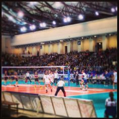 Volleyball is one of many sport disciplines supported by Field A Team mobile apps, sport management software and event management software