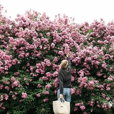 Flowers in full bloom! Tumblr Hipster, Creative Portrait Photography, Creative Portraits, Photography Ideas, Indie Photography, Pinterest Photography, Spring Photography, Floral Tumblr, Spring Aesthetic