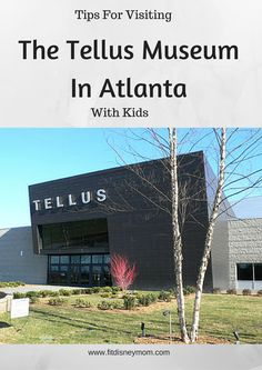 Atlanta's hidden gem: The Tellus Museum. Tips for visiting with the kids!