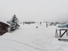 Kněžický vrch (report z 19.01.2021) #snowcz #snowreport Snow Report, Outdoor, Outdoors, Outdoor Games, The Great Outdoors