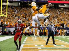 116 Best Tennessee Vols images | Tennessee, Tennessee ...