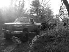 down in the backwoods