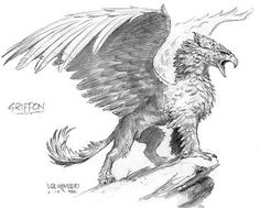 The Art of Todd Lockwood: Where Dragons Soar! Animal Sketches, Animal Drawings, Art Drawings, Mythical Creatures Art, Mythological Creatures, Fantasy Beasts, Fantasy Art, Gryphon Tattoo, Griffin Drawing