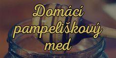 domaci-pampeliskovy-med-hl Med, Food And Drink, Health, Syrup, Health Care, Salud