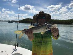 Some #snook from Saturday #fishing BLfishing.com. #captainkeith #swflorida #sanibel #pineisland #bluelinefishingcharters Pine Island, Fishing Charters, Blue Line, Florida, The Florida