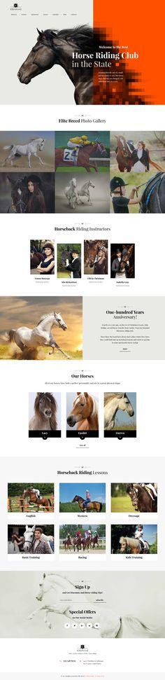 Horse Racing WordPress Theme - https://www.templatemonster.com/wordpress-themes/60085.html