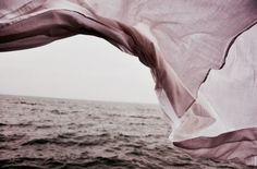Wind whipping up off the ocean! Look at the sails unfurling in the wind! Calma Interior, House Dayne, Ashara Dayne, Free People Clothing, Windy Day, Portrait, Tumblr, Pictures, Dusty Rose