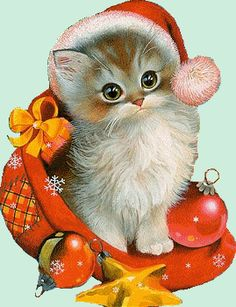 Gifs Christmas: Christmas Cats