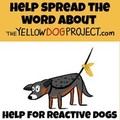 Wag It Forward: The Yellow Dog Project