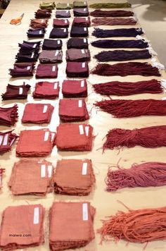 MAIWA: Natural Dyes on Salt Spring - Day 2