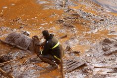 A rescue worker touches the face of a horse as they try to save it.