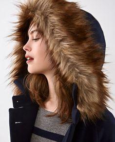 Wool coat Navy Dalex