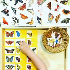 Letter B Preschool Unit Preschool Letter B, Letter B Activities, Symmetry Activities, Free Preschool, Preschool Printables, Free Printables, Montessori Baby, Montessori Activities, Preschool Activities