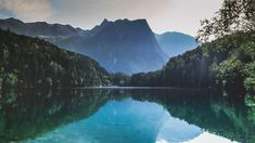 body of water near trees Mountain near Piburger See Nature Images, Nature Photos, Travel Images, Travel Pictures, Photography Guide, Travel Photography, Fotografie Guide, Landscape Photos, Landscape Photography