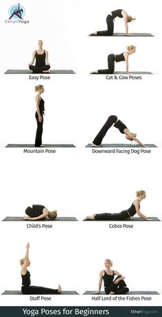 20 best yoga for beginners images  yoga for beginners