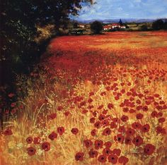 Field Of Red And Gold art poster at ArtPosters.com