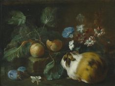 """art-and-things-of-beauty: """" Franz Werner von Tamm - Still life with fruit, flowers and Guinea pig, oil on canvas, 35 x 46 cm. Pig Art, Still Life Fruit, Global Art, Art Market, Guinea Pigs, Fruit Flowers, Oil On Canvas, Portrait, Painting"""